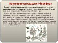 Каково значение круговорота веществ в биосфере